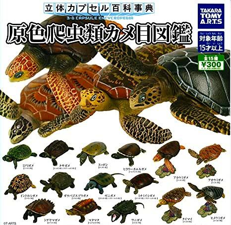 原色爬虫類カメ目図鑑 全15種セット TAKARA TOMY ガシャポン